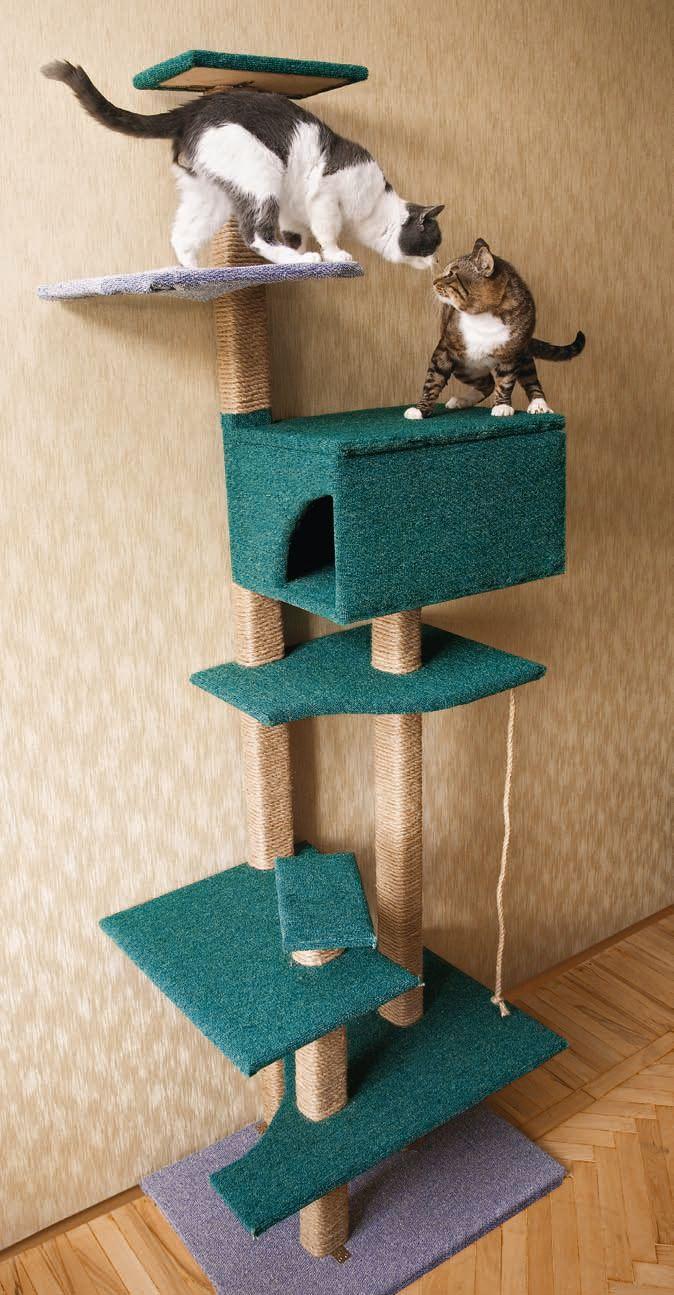 Как самим сделать для кота домик